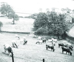 Farming has a long history.