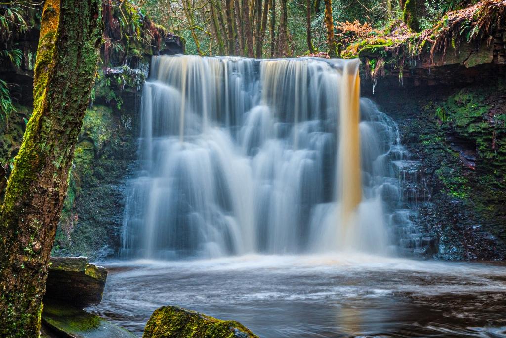 Goit Stock Falls, Joyce Simpson