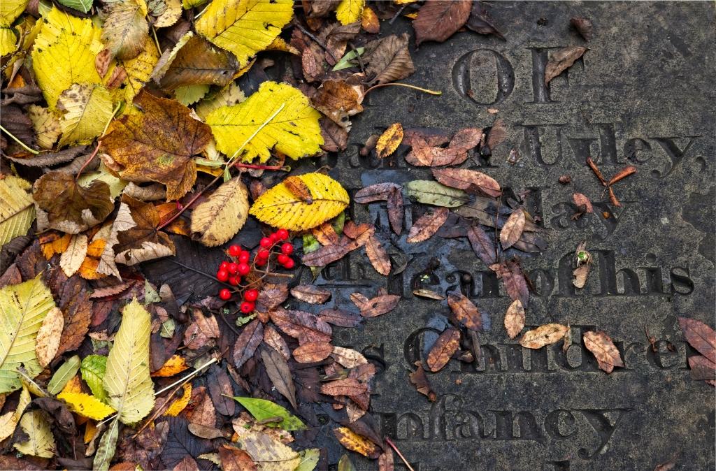 Gravestone Step, Andrew Sharp