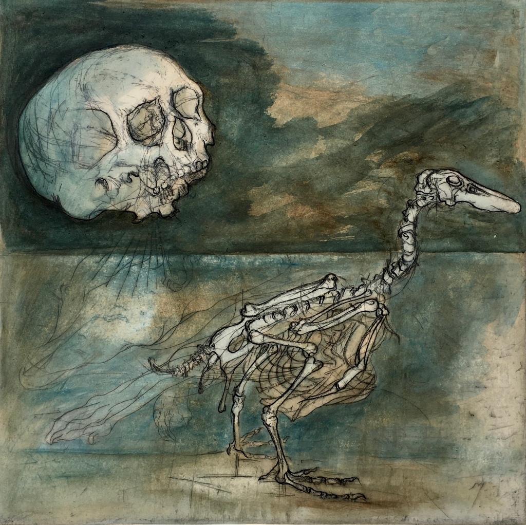 Moon Skull With Mallard